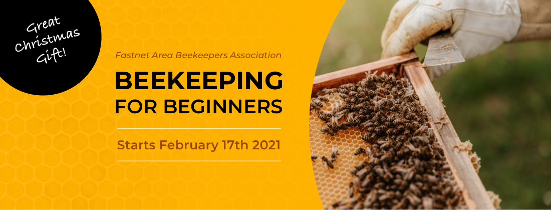 Beekeeping for Beginners - Online Course 2021